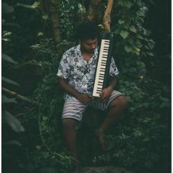 mental owl, venou, piano, mauritius, mauritian